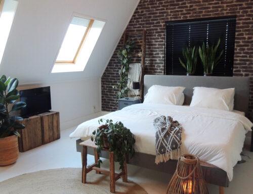 Să locuiești sau să nu locuiești în mansardă?